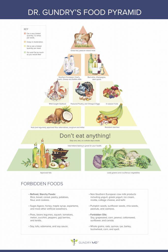 Dr. Gundry Food Pyramid